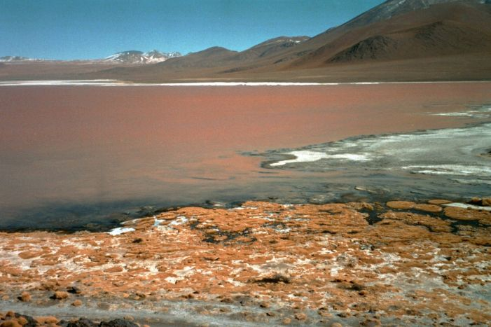 3) bolivie 2003 - LA LAGUNA COLORADA